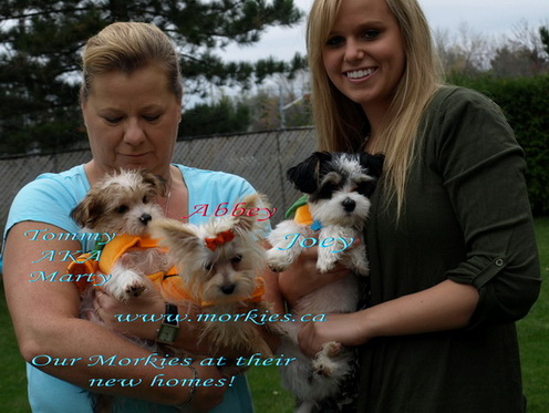 Marty, Abbey and Joey with owners Donna and Christine